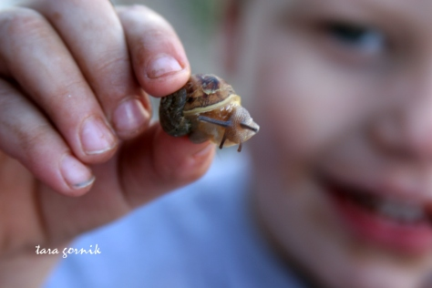the littlest and a snail